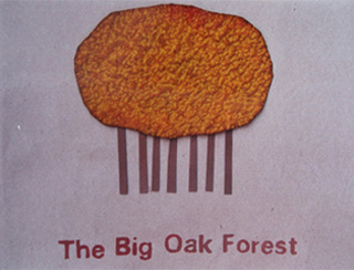 The Big Oak Forest